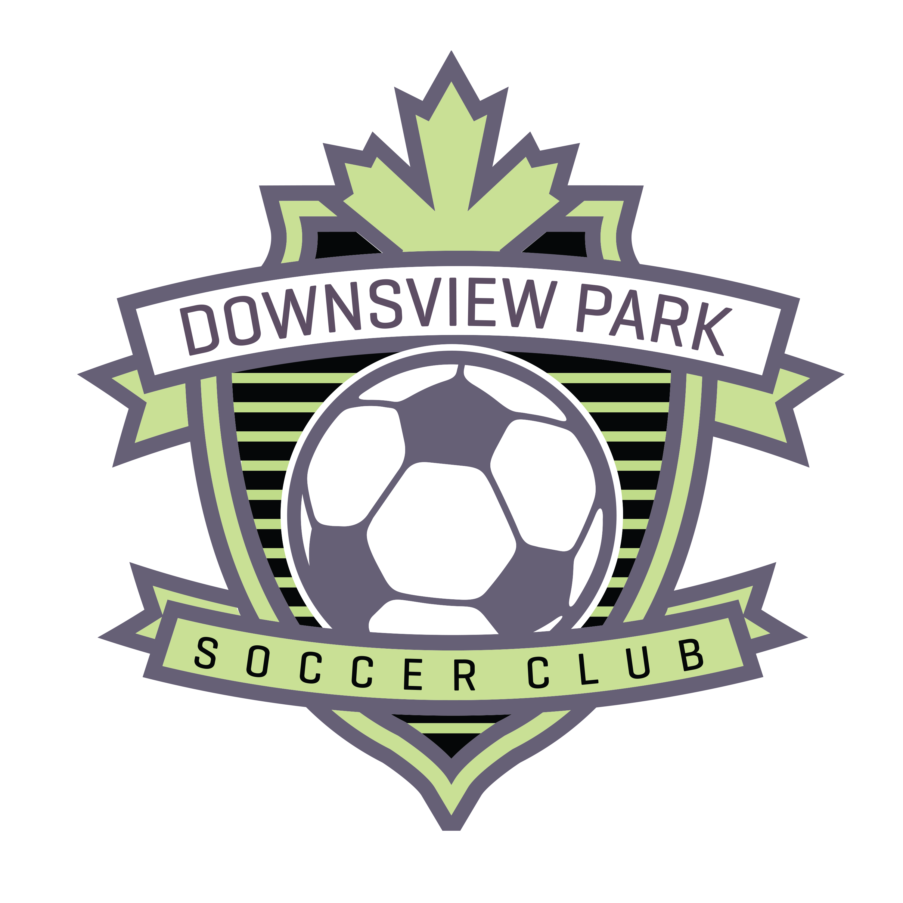 DownsviewPk_Logo_Colour.png